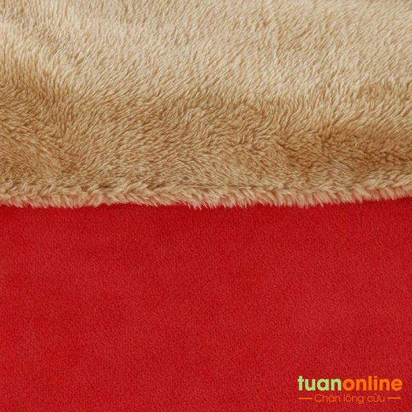 Chan long cuu Nhat Ban - Tuan Online can canh 11